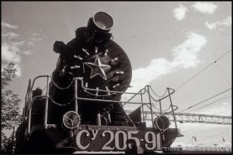 T-SIB_33