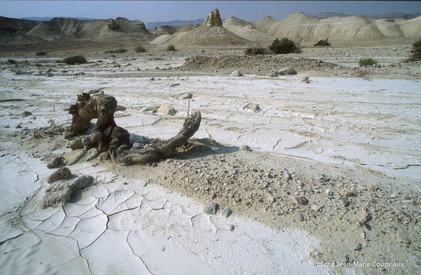 1997_Sinai-Jerusalem-216