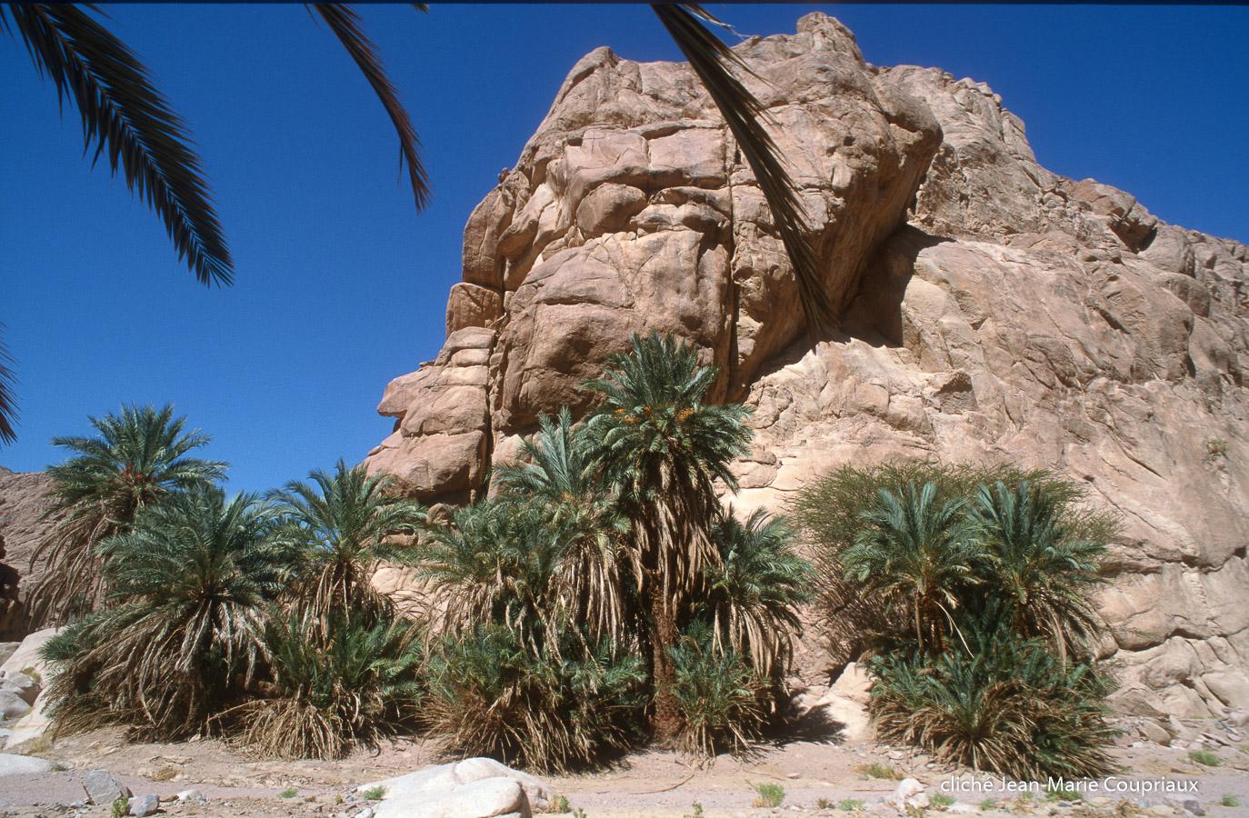1997_Sinai-Jerusalem-35