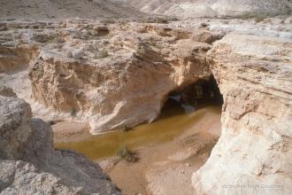 1997_Sinai-Jerusalem-177