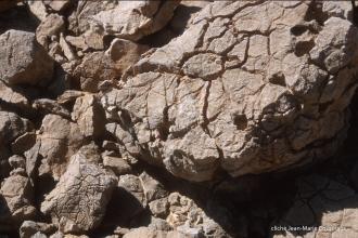1997_Sinai-Jerusalem-259