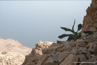 1997_Sinai-Jerusalem-258