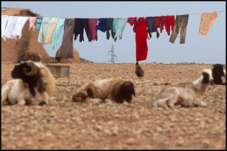 2000_Syrie-169