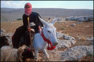 2000_Syrie-253